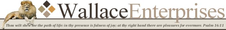 Wallace Enterprises Logo
